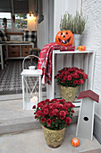 Autumn arrangement of chrysanthemums, pumpkins and lantern