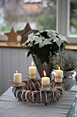 Advent wreath with poinsettia and ragwort