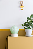 Structured, spherical lamp and small rubber tree against two-tone wall