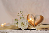 White chrysanthemum and gypsophila on open book with inner pages rolled into love-heart shape