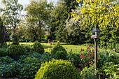 Bird feeder in sunlit garden