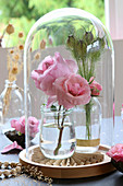 Roses and love-in-a-mist seed pods under glass cover