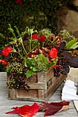 Dahlias and elderberries in wooden crate