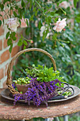 Basket of salvia flowers, oregano, unripe cherries, scissors and florists' wire