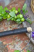Kranz mit grünen Kirschen: unreife Kirschen, Ziersalbei und Oregano im Wechsel auf einen Drahtring binden