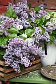 Basket of lilac
