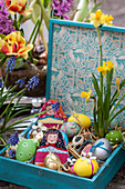 Colourful Easter eggs, narcissus and egg cosies in wooden crate
