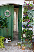Vertical planter: wicker baskets on ladder