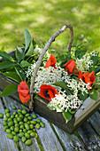 Korb mit Holunderblüten und Klatschmohn