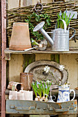 Grape hyacinths in watering can next to box heart and handmade paper plant pots