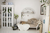 Dog lying on recamiere in shabby-chic living room