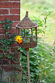 Wicker bird feeder on pole