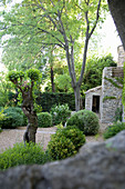 Boxwood balls in a garden with a gravel bed around a natural stone house