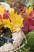 Herbstlaub mit Wickeldraht auf Strohrömer binden