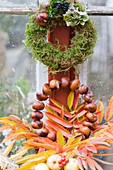 Autumn wreaths made of moss and chestnuts with colorful autumn leaves, hydrangea blossom, boxwood, and privet berries