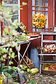 Arbeitstisch für Herbstbinderei, Türkranz aus Ahornblättern und Korb mit Äpfeln