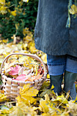 Woman in autumn garden next to basket with colourful autumn leaves