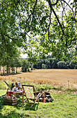 Picnic in the garden with deck chair and fire bowl