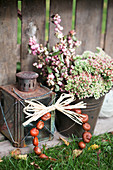 Small bouquet of stonecrop and snowberries, old lantern and wreath of chestnuts