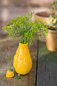 Small bouquet of fennel blossoms in an ornamental pumpkin as a vase