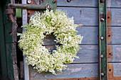 White wreath of elderflowers