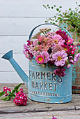 Summer bouquet of yarrow, zinnias, summer asters, and carnations in a blue watering can