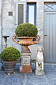 Box balls in pot and urn next to dog sculpture