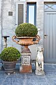 Amphore und Trog mit Buchsbaumkugeln und Hundeskulptur