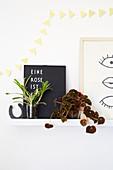 Blattschmuckpflanzen auf Wandbord mit Bildern