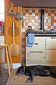Dog lying on kitchen floor next to the AGA stove