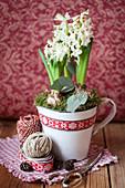 Hyacinths in an enamel mug
