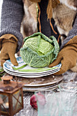 Hands with gloves hold plate with savoy cabbage