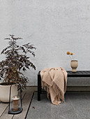 Blanket on black bench, potted plant and lantern on terrace