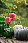 Dahlia blossoms in a ball vase and pumpkins