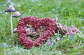 Heart-shaped wreath of pink pepper