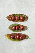 Eßkastanien auf Kastanienblättern