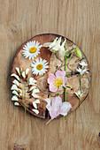 Blüten von Margerite, Akelei, Hundsrose, Wiesenschaumkraut und Hornkraut auf Holzscheibe