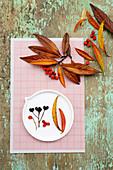 Blätter und Beeren der Strauchmispel in leuchtenden Herbstfarben