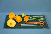Pot marigolds