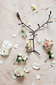Magnolia twig, roses, narcissus, waxflower and white St. John's wort berries