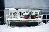 Lanterns and evergreen plants on white wooden bench in snow