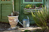 Rosemary, window box, planter, and watering can at the garden house