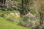 Slope garden with pavilion, dry stone wall and flowering apple tree