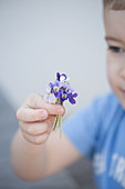 A boy holding a bouquet of violet flowers