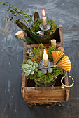 Originelles Gesteck in antiker Holzkiste mit Sukkulenten, Moos und Reagenzglas