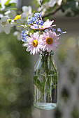 Small bouquet with daisies, forget-me-nots and buttercups in a bottle