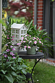 Side table, foxglove, potted petunia and lantern