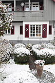 Snowy front garden with box balls