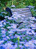 Park Bench and Flowers, Portland, Oregon, USA