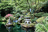 Heavenly Fall, Portland Oregon Japanese Garden, provides a quiet place of contemplation.  The Japanese Garden in Portland is a 5.5 acre garden and retreat.  Said to be one of the most authentic Japanese Garden's outside of Japan, the rolling terrain and w